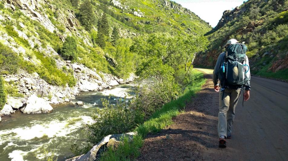 colorado trail-10.jpg