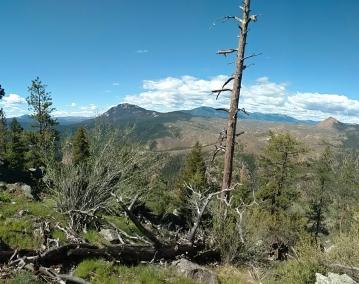 colorado trail-4.jpg